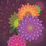 Εξωτική ανασκόπηση λουλουδιών Στοκ φωτογραφία με δικαίωμα ελεύθερης χρήσης