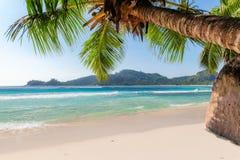 Εξωτική παραλία στο τροπικό νησί στοκ φωτογραφίες