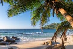 Εξωτική τροπική παραλία με τους φοίνικες και μπλε θάλασσα στο ηλιοβασίλεμα στοκ φωτογραφία με δικαίωμα ελεύθερης χρήσης
