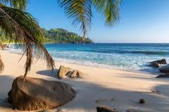 Εξωτική τροπική παραλία με τους φοίνικες και μπλε θάλασσα στο ηλιοβασίλεμα στοκ φωτογραφία