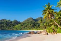 Εξωτική τροπική παραλία με τους φοίνικες και μπλε θάλασσα στο ηλιοβασίλεμα στοκ εικόνα με δικαίωμα ελεύθερης χρήσης