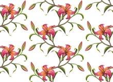 Άνευ ραφής υπόβαθρο σχεδίων λουλουδιών Στοκ Εικόνες