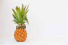 Εξωτικός ανανάς μωρών φρούτων που απομονώνεται στο άσπρο υπόβαθρο υγεία στοκ εικόνες