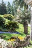 Εξωτικός κήπος Μπελάτζιο Ιταλία Como στοκ φωτογραφίες