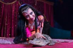 Εξωτικός μικρός αλλιγάτορας Petting χορευτών στη σκηνή στοκ φωτογραφία με δικαίωμα ελεύθερης χρήσης