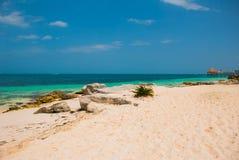 Εξωτικός παράδεισος θέρετρο τροπικό Καραϊβική θάλασσα, Cancun Παραλία του Μεξικού τροπική στις Καραϊβικές Θάλασσες στοκ φωτογραφίες με δικαίωμα ελεύθερης χρήσης