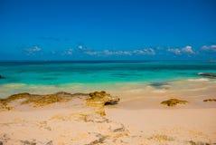 Εξωτικός παράδεισος θέρετρο τροπικό Καραϊβικός λιμενοβραχίονας θάλασσας κοντά σε Cancun Παραλία του Μεξικού τροπική στις Καραϊβικ στοκ εικόνες με δικαίωμα ελεύθερης χρήσης
