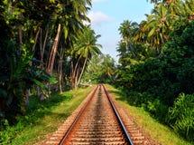 Εξωτικός σιδηρόδρομος Sri Lankan στοκ εικόνες