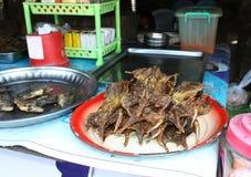 Εξωτικός τηγανισμένος τρόφιμα αρουραίος στοκ φωτογραφίες με δικαίωμα ελεύθερης χρήσης