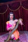 Εξωτικός χορευτής που γονατίζει στη σκηνή με το μεγάλο φίδι στοκ φωτογραφία με δικαίωμα ελεύθερης χρήσης