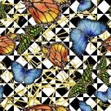 Εξωτικό άγριο έντομο πεταλούδων σε ένα ύφος watercolor Άνευ ραφής πρότυπο ανασκόπησης απεικόνιση αποθεμάτων
