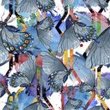 Εξωτικό άγριο έντομο πεταλούδων σε ένα ύφος watercolor Άνευ ραφής πρότυπο ανασκόπησης ελεύθερη απεικόνιση δικαιώματος