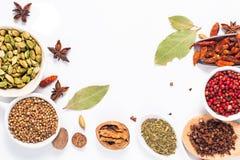 Εξωτικό βοτανικό μίγμα έννοιας τροφίμων του οργανικού καρδάμωμου po καρυκευμάτων Στοκ Εικόνες