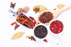Εξωτικό βοτανικό μίγμα έννοιας τροφίμων του οργανικού καρδάμωμου po καρυκευμάτων Στοκ εικόνα με δικαίωμα ελεύθερης χρήσης