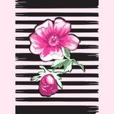 Εξωτικό ελαφρύ κτύπημα λωρίδων τυπωμένων υλών τριαντάφυλλων λουλουδιών κλάδων βοτανικό τροπικό Στοκ Φωτογραφία