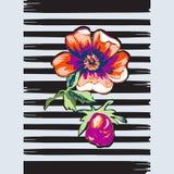 Εξωτικό ελαφρύ κτύπημα λωρίδων τυπωμένων υλών τριαντάφυλλων λουλουδιών κλάδων βοτανικό τροπικό Στοκ φωτογραφίες με δικαίωμα ελεύθερης χρήσης