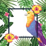 Εξωτικό και τροπικό πουλί στοκ εικόνα με δικαίωμα ελεύθερης χρήσης