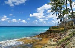 Εξωτικό καραϊβικό θέρετρο φοινίκων Στοκ Εικόνες