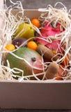 Εξωτικό μάγκο φρούτων, λωτός, carambola, πορτοκάλι, κουμκουάτ, φρούτα δράκων Στοκ Εικόνες