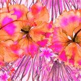 εξωτικό πρότυπο Υπόβαθρο θερινού watercolor Στοκ Εικόνες