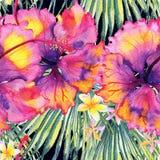 εξωτικό πρότυπο Υπόβαθρο θερινού watercolor Στοκ Φωτογραφία