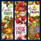 Εξωτικό τροπικό σκίτσο συγκομιδών φρούτων οργανικό ελεύθερη απεικόνιση δικαιώματος