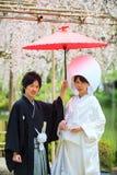 Εορτασμός ενός χαρακτηριστικού γάμου στην Ιαπωνία Στοκ εικόνα με δικαίωμα ελεύθερης χρήσης