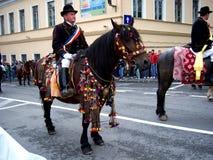 Εορτασμός στην πόλη Brasov 12 Στοκ Εικόνες