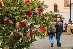 Εορτασμός της αγοράς κυκλοφορίας συγκομιδών φθινοπώρου στο τετράγωνο πόλεων με τις διακοσμήσεις Ένα διακοσμημένο δέντρο Στοκ Εικόνες