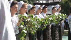 Εορτασμός της συγκομιδής των σταφυλιών Στοκ εικόνα με δικαίωμα ελεύθερης χρήσης