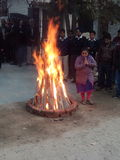 Εορτασμός Lohri Στοκ Φωτογραφίες