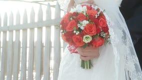 Εορταστική ανθοδέσμη των κόκκινων τριαντάφυλλων στα χέρια της νύφης απόθεμα βίντεο