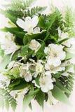 Εορταστική ανθοδέσμη των όμορφων άσπρων hibiscus λουλουδιών Στοκ φωτογραφία με δικαίωμα ελεύθερης χρήσης