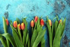 Εορταστική ρύθμιση για Πάσχα με τις όμορφες τουλίπες στο μπλε backgro Στοκ Φωτογραφία