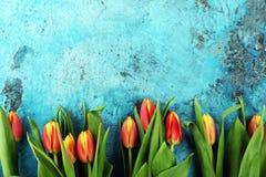 Εορταστική ρύθμιση για Πάσχα με τις όμορφες τουλίπες στο μπλε backgro Στοκ Φωτογραφίες