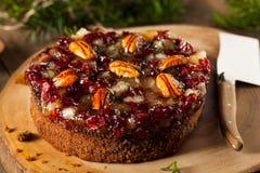 Εορταστικό κέικ φρούτων διακοπών Στοκ εικόνα με δικαίωμα ελεύθερης χρήσης