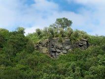 Επάνθιση Gritstone που περιβάλλεται από το δάσος Στοκ Εικόνα