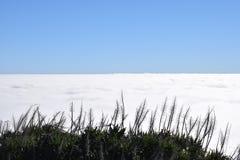 Επάνω από τα σύννεφα - πανέμορφη άποψη από την κορυφή συχνά Pico do Arieiro Στοκ Εικόνες