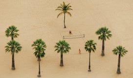 Επάνω από την άποψη σχετικά με δύο αγόρια που παίζει στην πετοσφαίριση μεταξύ των φοινίκων στην παραλία Teresitas στοκ εικόνα με δικαίωμα ελεύθερης χρήσης