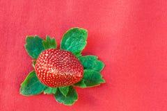 επάνω από την πράσινη κόκκινη φράουλα φύλλων Στοκ εικόνα με δικαίωμα ελεύθερης χρήσης