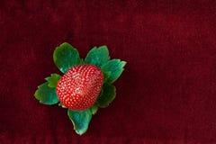 επάνω από την πράσινη κόκκινη φράουλα φύλλων Στοκ Φωτογραφίες