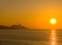 επάνω από τη θάλασσα αυγής Στοκ εικόνες με δικαίωμα ελεύθερης χρήσης