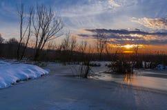 επάνω από το φωτεινό χειμώνα ανώτατων δέντρων ηλιοβασιλέματος ήλιων γουνών κόκκινο Στοκ Φωτογραφίες