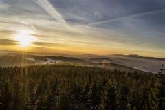 επάνω από το φωτεινό χειμώνα ανώτατων δέντρων ηλιοβασιλέματος ήλιων γουνών κόκκινο Στοκ Φωτογραφία