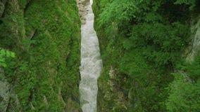 Επάνω στην άποψη του ποταμού βουνών στη στενή βαθιά κοιλάδα μεταξύ των βράχων που καλύπτονται με την πρασινάδα φιλμ μικρού μήκους