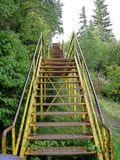 Επάνω στην κίτρινη σκάλα Στοκ Εικόνες