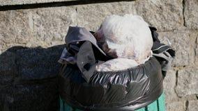 Επάνω, στην οδό, πεζοδρόμιο, είναι το δοχείο σκουπιδιών, που γεμίζουν στην κορυφή με τα απορρίμματα, απορρίματα οικολογία, ρύπανσ απόθεμα βίντεο