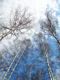 Επάνω Στοκ εικόνα με δικαίωμα ελεύθερης χρήσης