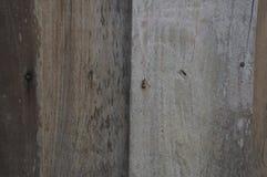 Επίγεια έννοια πατωμάτων υποβάθρου λεπτομέρειας σύστασης ξύλινη ξύλινη Στοκ εικόνα με δικαίωμα ελεύθερης χρήσης