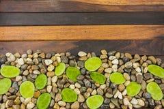 Επίγειο αμμοχάλικο και ξύλινος πίνακας Στοκ φωτογραφία με δικαίωμα ελεύθερης χρήσης